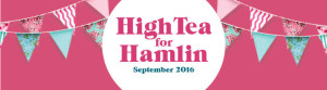 hamlin-gofundraise-banner